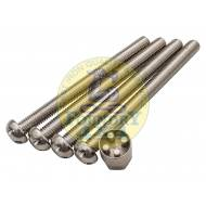 M10 x 110 Tamper Proof Bolt Set of 4