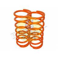 "Britpart 1"" Lowered Front Coil Springs"
